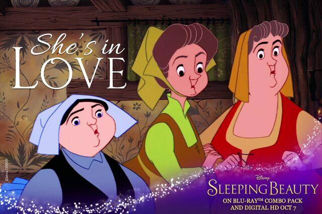 File:Sleeping Beauty Diamond Edition She's in Love Promotion.jpg