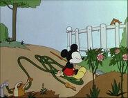 Mickey's Garden-27