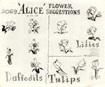 Model sheet 350-8021 flower suggestions daffodils lilies tulips blog