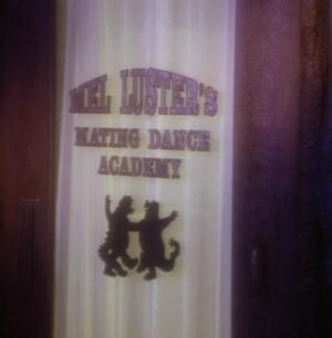 File:Matingdanceschool.jpg