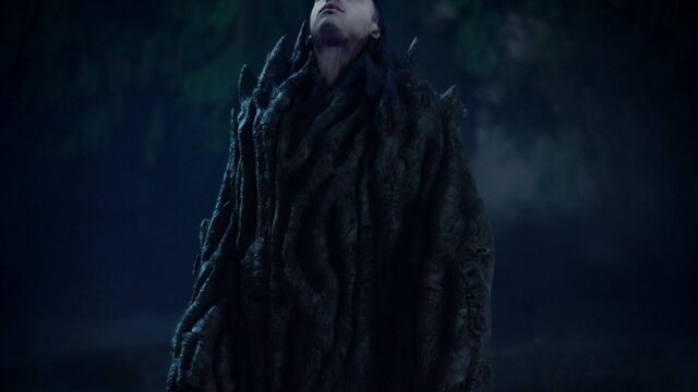 File:Once Upon a Time - 5x05 - Dreamcatcher - Merlin turns into a Tree.jpg