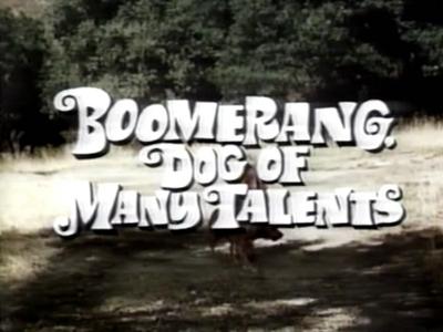 File:1968-boomerang-01.jpg