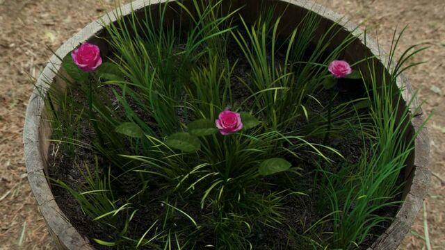 File:Flowers Nimue.jpg