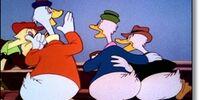 Goosey Poosey
