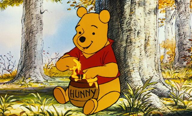 File:Winnie the Pooh really loves to enjoy honey.jpg