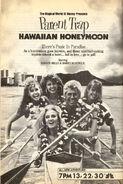 The Parent Trap IV- Hawaiian Honeymoon