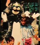 Tom Cat at Disney-MGM