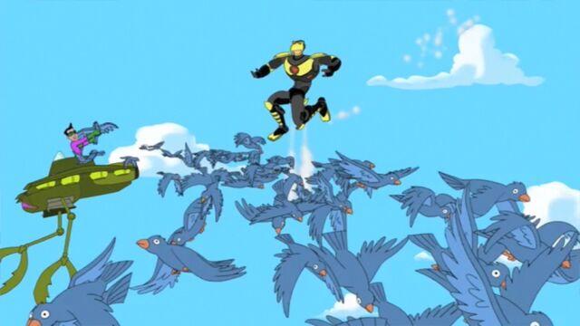 File:Khaka Releases Birds.jpg