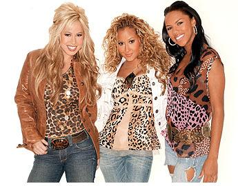 File:Cheetah-Girls-the-cheetah-girls-156823 345 270.jpg