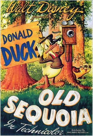 File:Old-sequoia-original.jpg