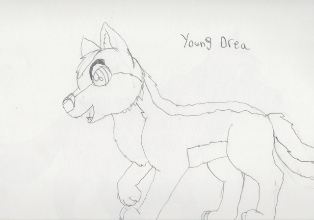 File:Young Drea Sketch.png
