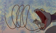 Rescuers-down-under-disneyscreencaps.com-4453