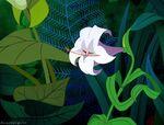 Alice-disneyscreencaps com-3024