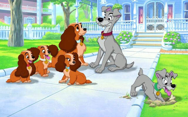 File:Lady and the Tramp 2 Promotional Images - 4.jpg