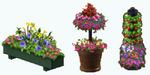 EarthDay - Flower Bonus