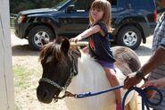 Jasmine and horse