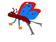 Butterflyocket