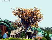 Chip 'n Dale's Treehouse (TDL)
