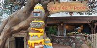 The Many Adventures of Winnie the Pooh (Magic Kingdom)