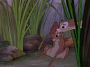 Bambi-disneyscreencaps.com-2841