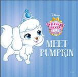 Meet Pumpkin