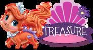 Treasurename