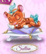 Sultan 5