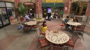 Reptile World from Kickin IT