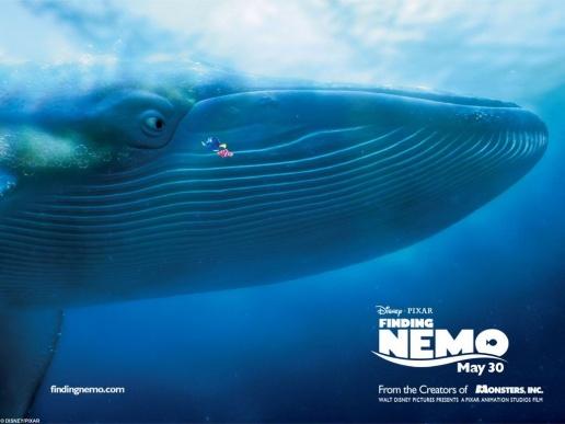 Whale | Disney's Sebastian & Dory Wiki | FANDOM powered by Wikia