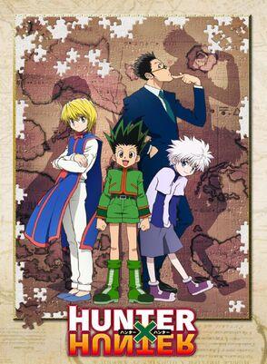 Hunter x Hunter (2011 Anime)