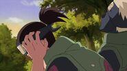Naruto Shippuuden 177-198