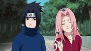 Naruto Shippuuden 179-235