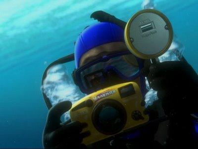 File:A113 Nemo.jpg