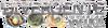 Divergent-brasilwordmark