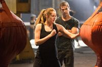 DIVERGENT trainingnomark