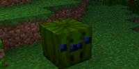 Junglespider Pumpkin