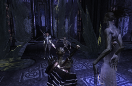 Divinity 2 Close to the Bone - Keara, Skeleton, Velanir, Slayer