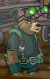 New secret agent bear