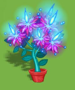 File:Dizzywood potted pyrobloom.jpg