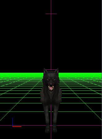 Plik:Cr dog2 c1g1.jpg
