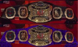 Mixed Tag Team Belts