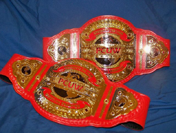 Women's Tag Team Belts