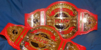 PCUW Women's Tag Team Championship