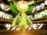 Sunflowmon Digivolve