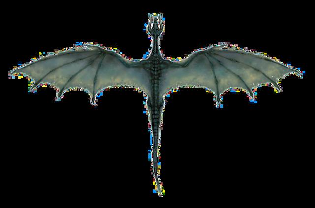 File:Black Dragon (overhead).png