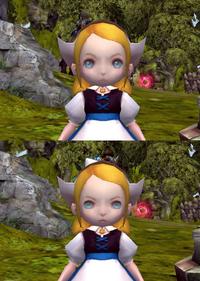 Daisy-Japan-VS-Regular