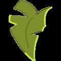 Kokoko Leaf