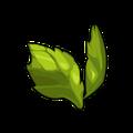 Green Scaraleaf Wings