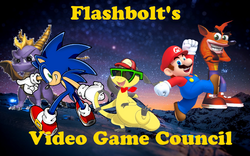 Video game Council