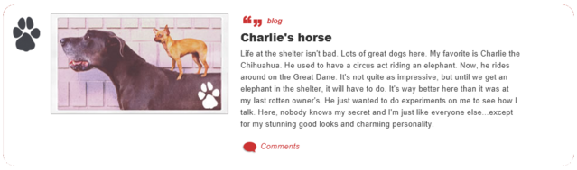 File:Charlie's horse.png